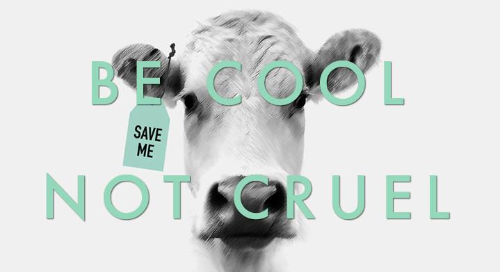 Hecosfair, une marque respectueuse de la cause animale